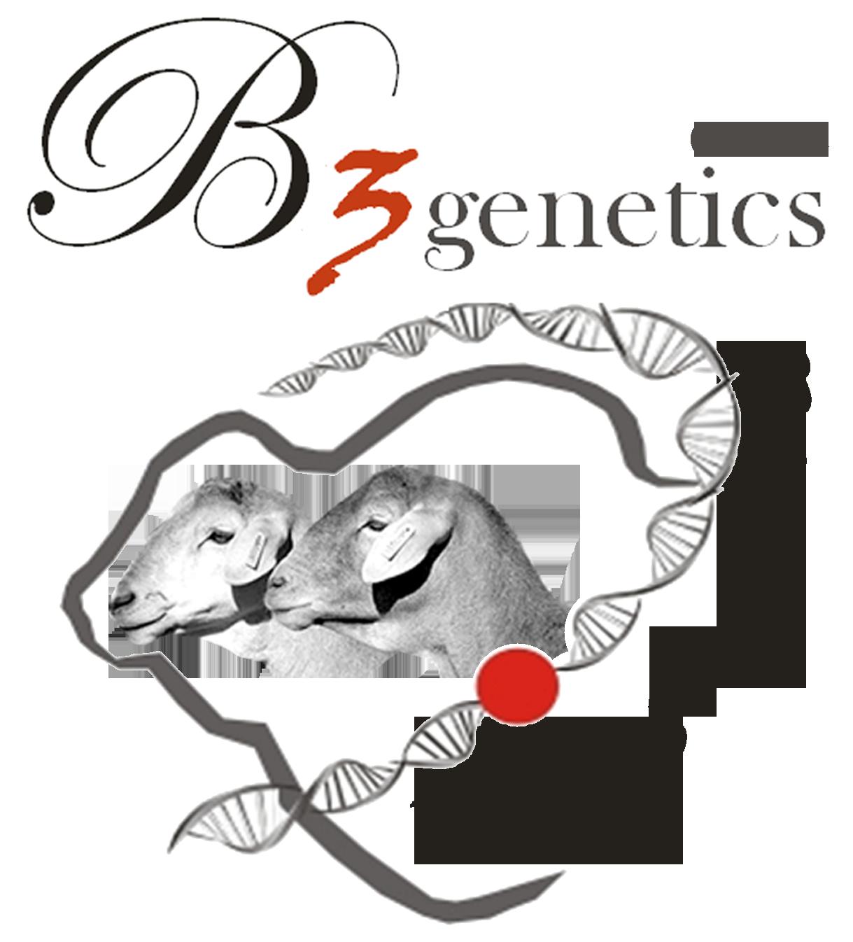 B3 Genetics